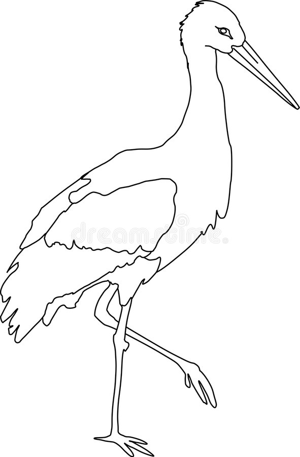 Cigüeña blanca ilustración del vector