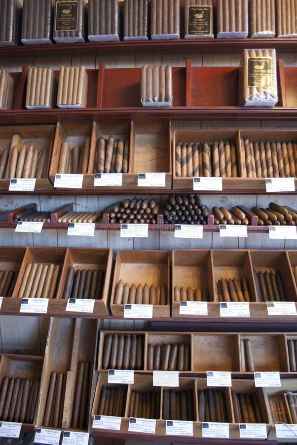 Cigar shop. Showcase with a lot of Cuban cigars royalty free stock photos