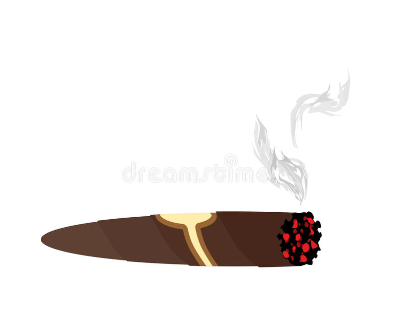 Cigar and smoke on a white background. An expensive Cuban cigar stock illustration