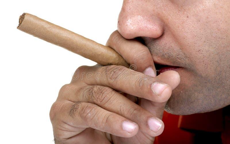 Download Cigar smoking stock photo. Image of aroma, smoking, cigars - 24685128