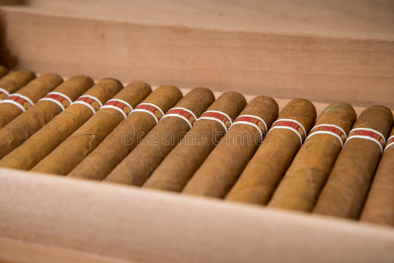Cigare et humidificateur cubains images stock