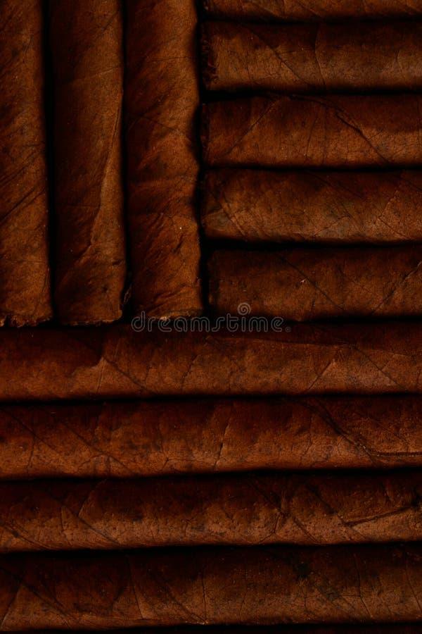 Cigares photo stock