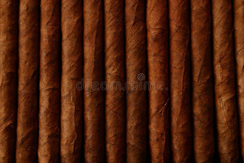 Cigares photo libre de droits
