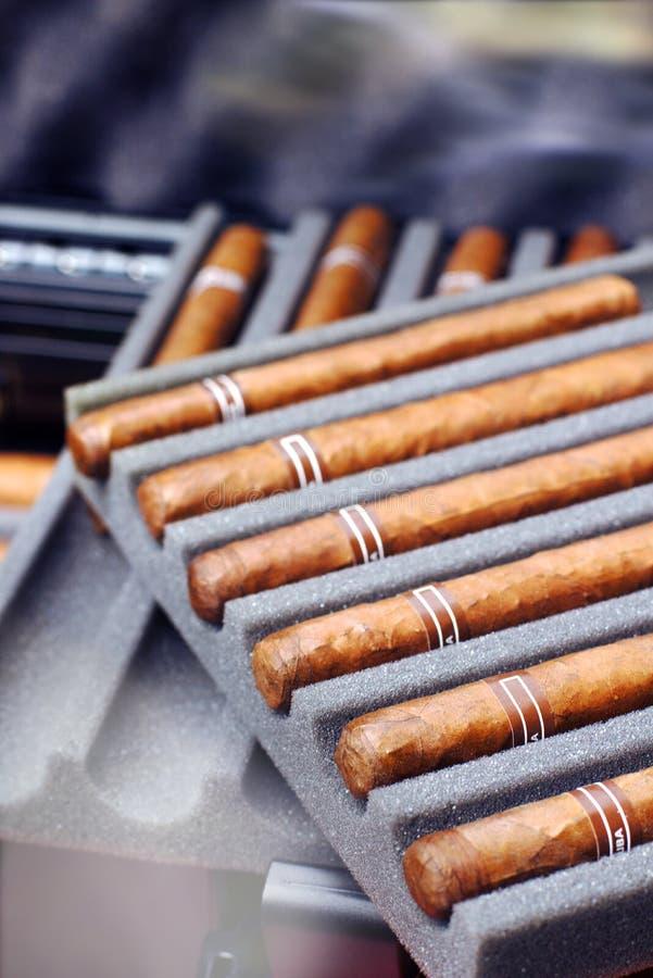 Cigares dans la protection d'humidificateur de cas de voyage pour des amants images libres de droits