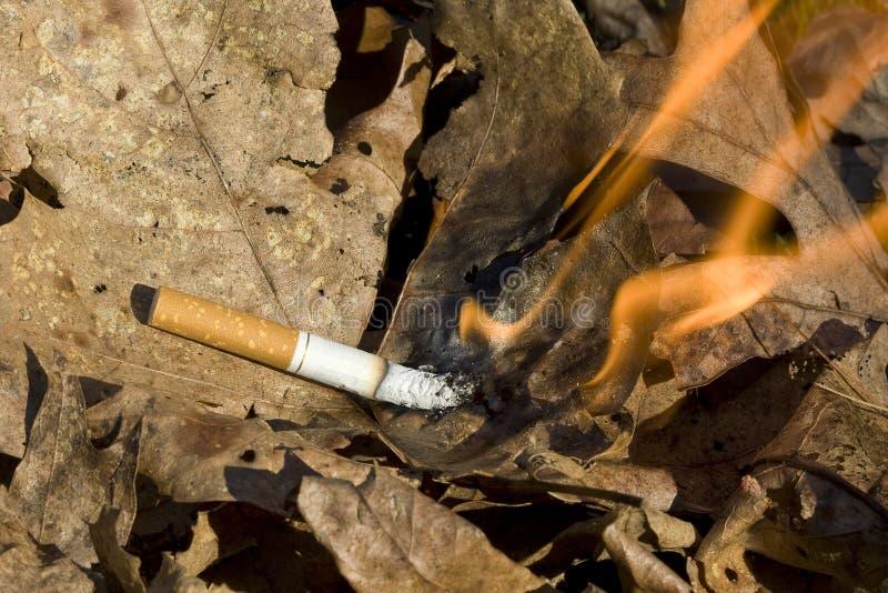 Cigarette burning leaves stock photos
