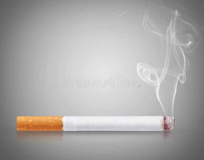 Cigarette burns. On gray background stock photos