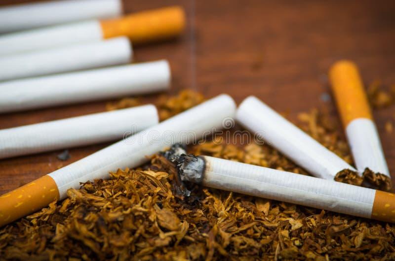 Cigarettes et tabac de plan rapproché se trouvant autour sur la surface en bois, concept contre le tabac photo stock