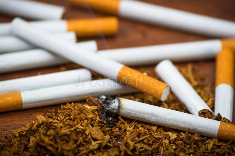 Cigarettes et tabac de plan rapproché se trouvant autour sur la surface en bois, concept contre le tabac photographie stock