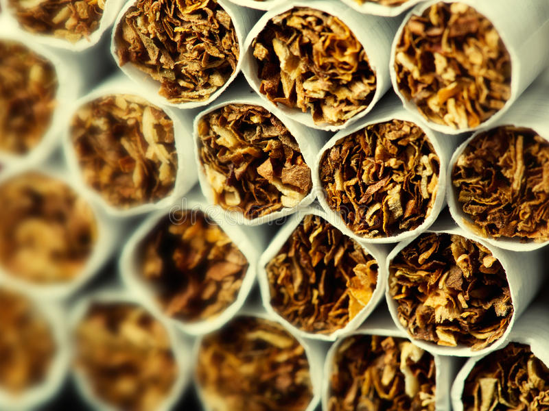 Cigarettes in pack royalty free stock photo