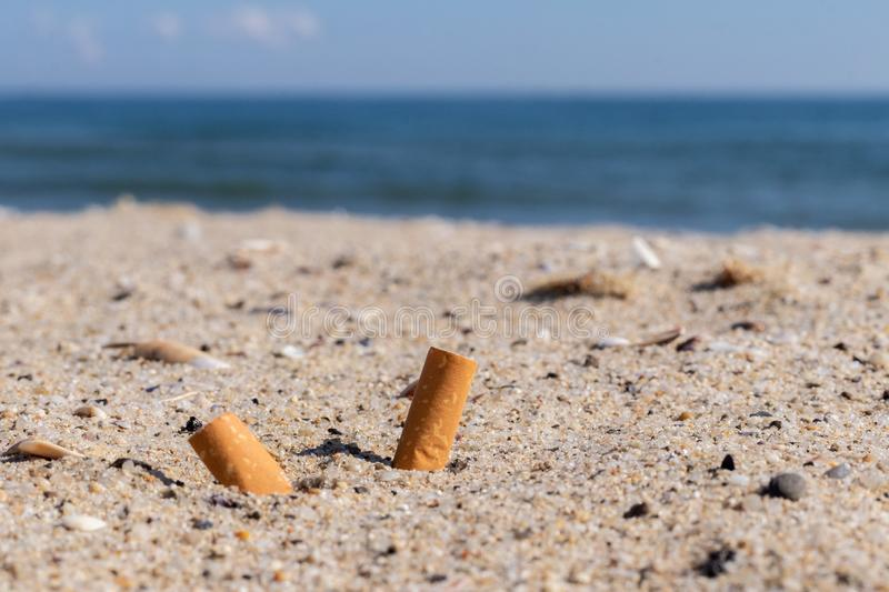 Cigarettes in the sand environmental pollution and nature stock photos