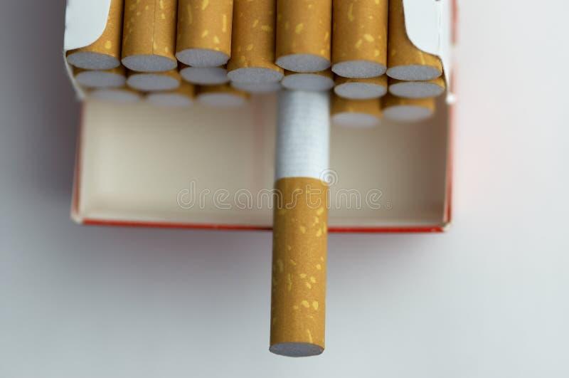 cigarettmakropacke fotografering för bildbyråer