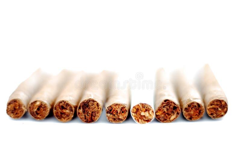 Cigarillo à un arrière-plan blanc photo libre de droits