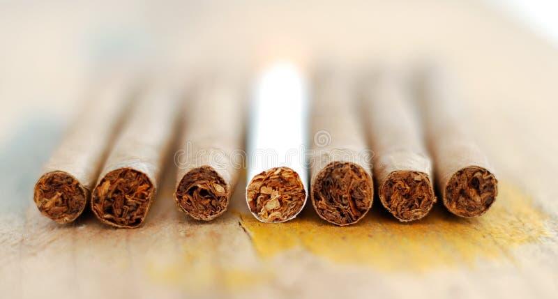 Cigarillo à un arrière-plan en bois photos libres de droits