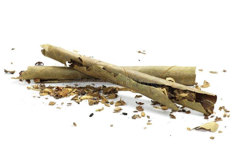 cigarillo photos stock
