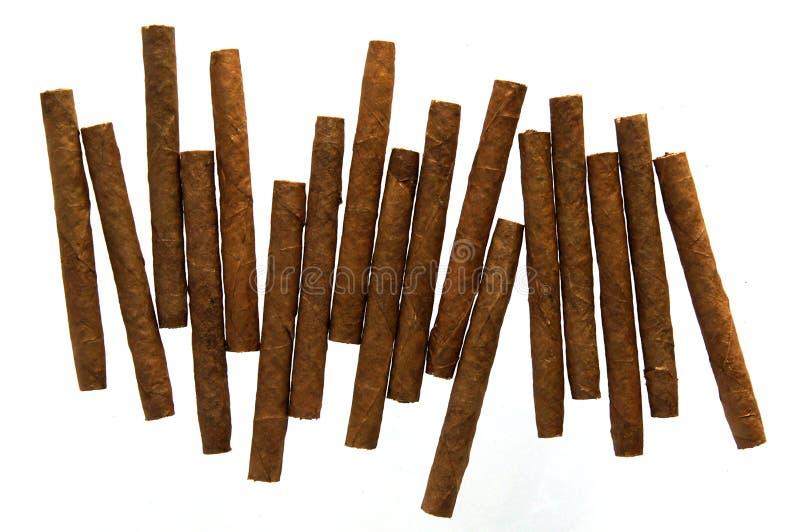 Cigarillo isolati su bianco fotografia stock libera da diritti