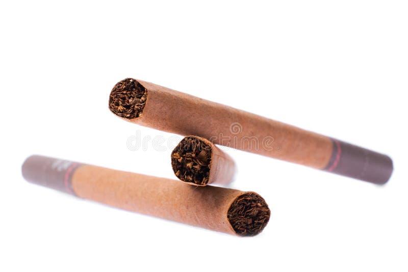 Cigarillo a macroistruzione fotografia stock