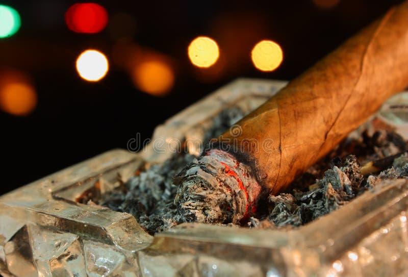 cigarr royaltyfri foto