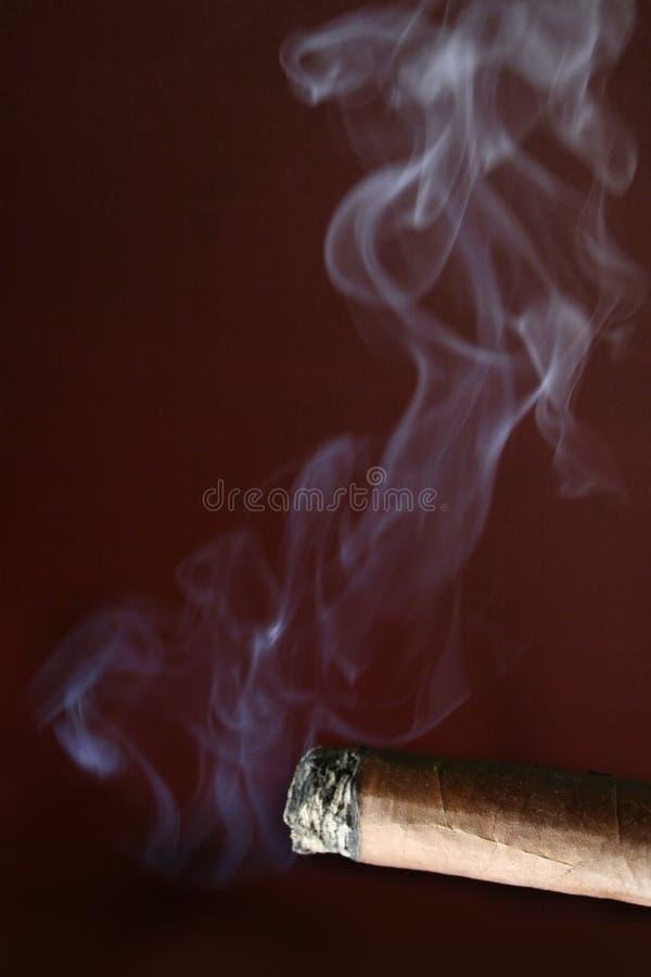 cigarr royaltyfri bild