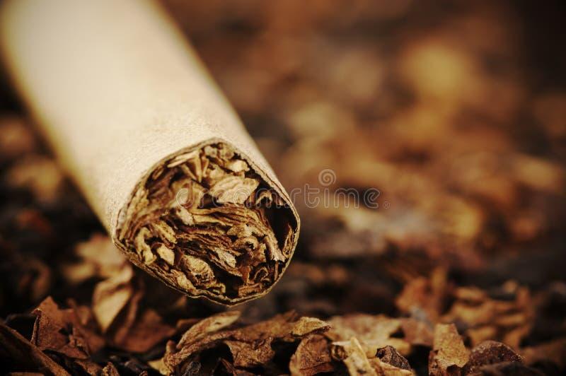 Cigarr och tobak royaltyfria foton