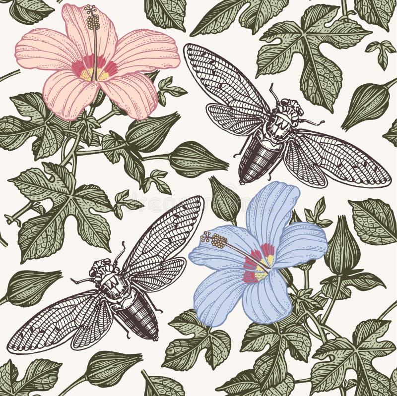 Cigarras del hibisco Florece fauna de los insectos de la malva Fondo inconsútil de la materia textil Grabado del dibujo A pulso r ilustración del vector