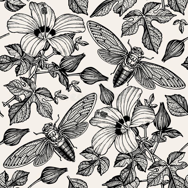 Cigarras del hibisco Florece fauna de los insectos de la malva Fondo inconsútil de la materia textil Grabado del dibujo Realista  libre illustration