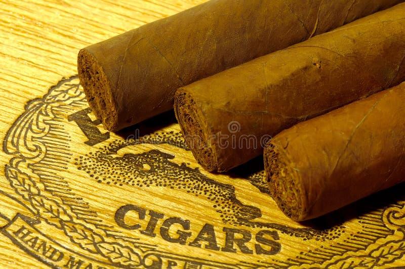 Cigarrer Arkivbild