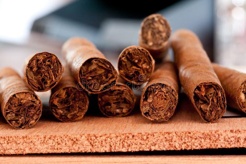 cigarrer few fotografering för bildbyråer
