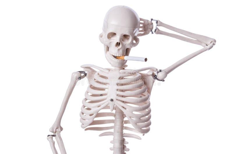 Cigarrillo que fuma esquelético aislado imagenes de archivo