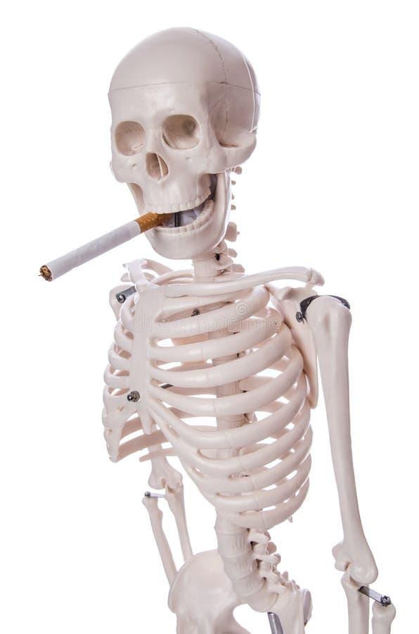 Cigarrillo que fuma esquelético aislado foto de archivo