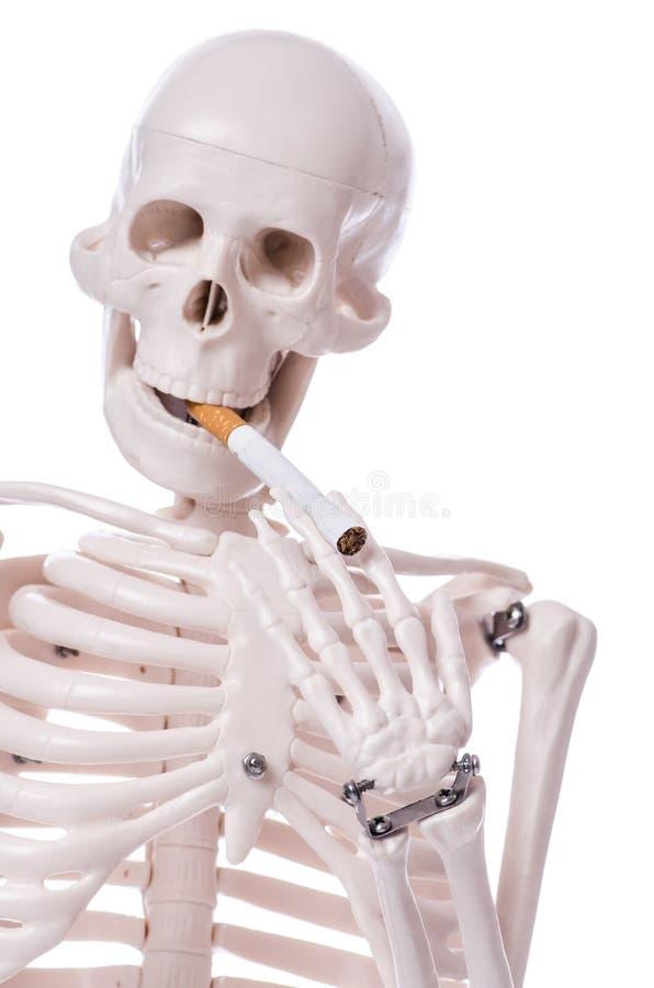 Cigarrillo que fuma esquelético aislado imagen de archivo