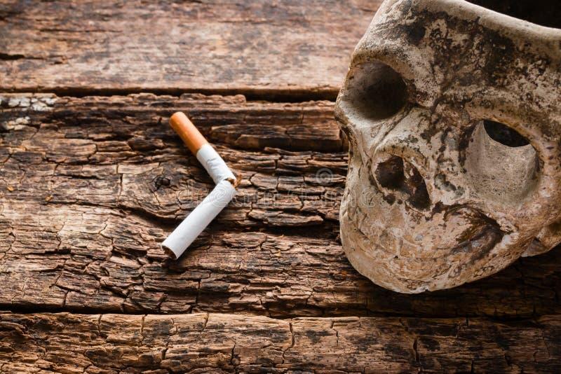Cigarrillo y cenicero quebrados bajo la forma de cráneo imagen de archivo