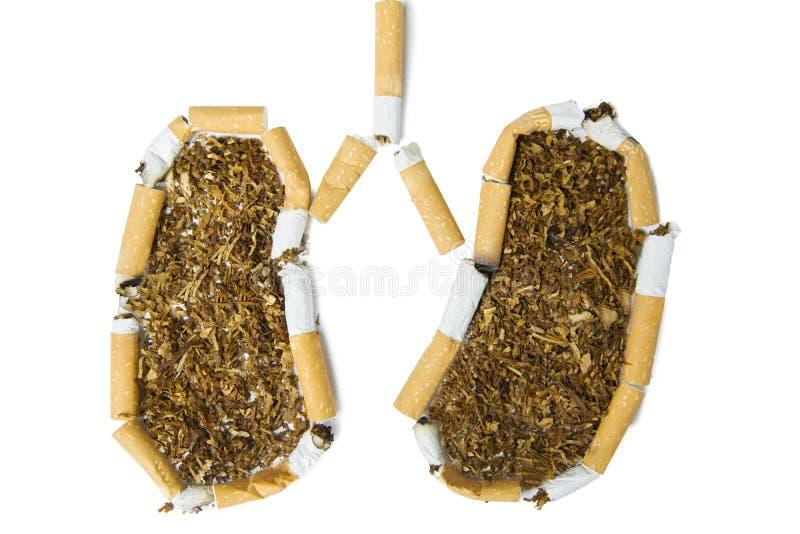 Cigarrillos quebrados que forman el pulmón fotos de archivo libres de regalías