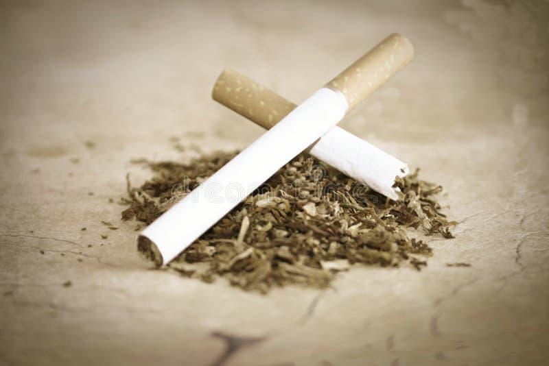 Cigarro e tabaco fotografia de stock