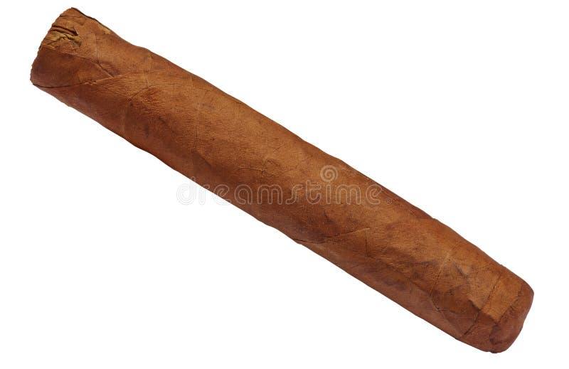 Cigarro marrón cubano aislado en blanco imagen de archivo libre de regalías