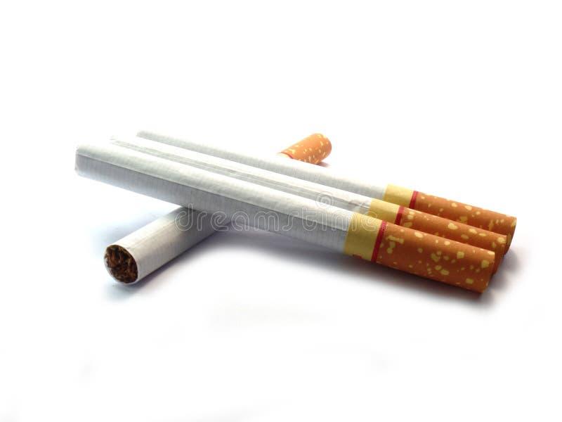 Cigarro no isolado imagem de stock