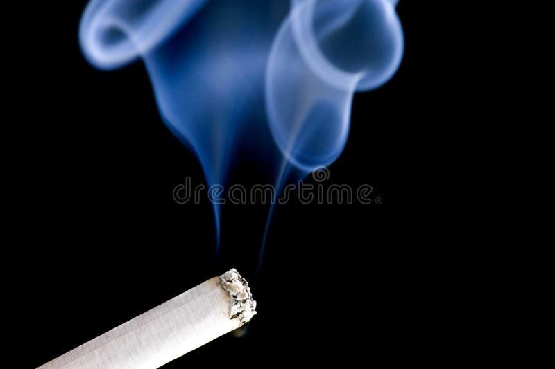 Cigarro no preto fotos de stock royalty free