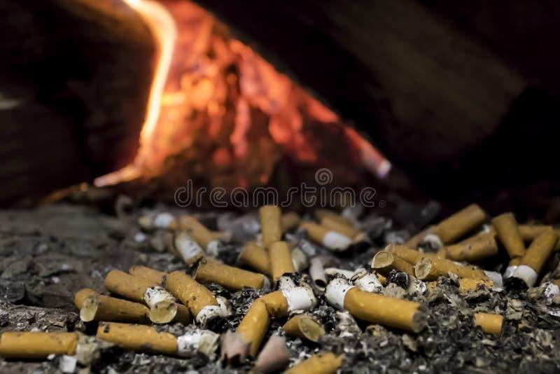 Cigarros imagem de stock royalty free
