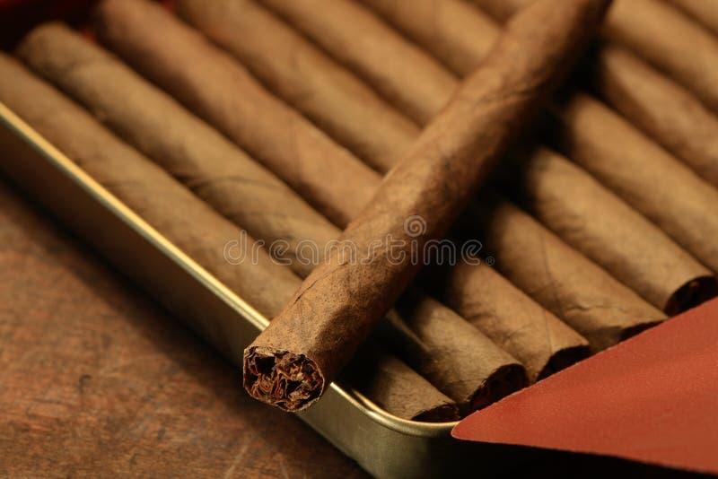 Cigarros en rectángulo foto de archivo