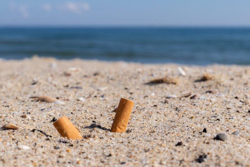 Cigarros na areia, poluição ambiental e natureza fotos de stock