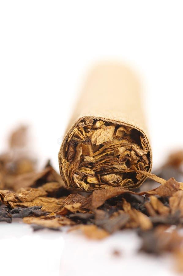 cigarrtobak arkivfoton
