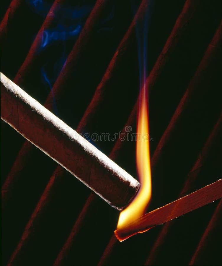 Free Cigars Royalty Free Stock Image - 16332806