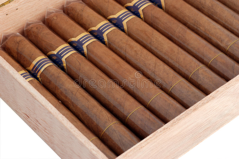 Cigars in a humidor royalty free stock image