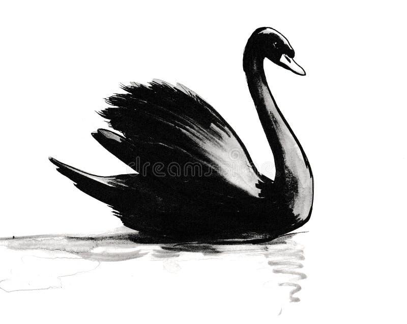 Cigno nero sull'acqua royalty illustrazione gratis