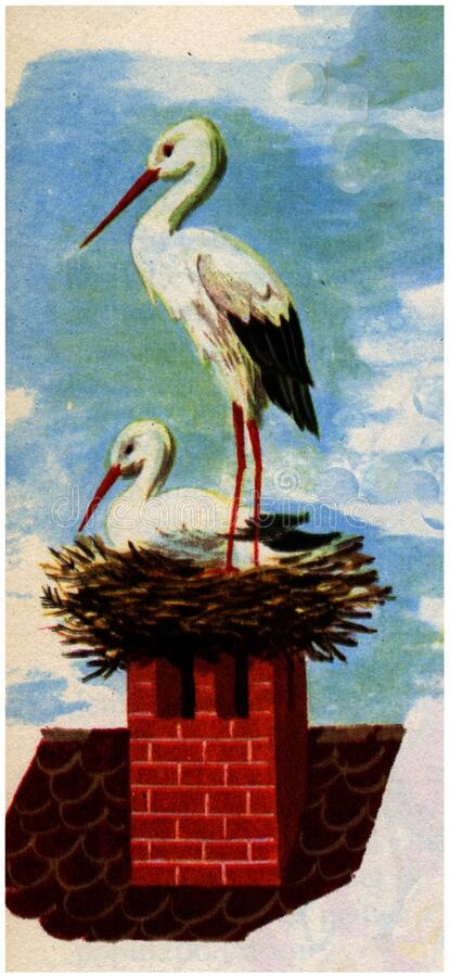 Cigogne Free Public Domain Cc0 Image