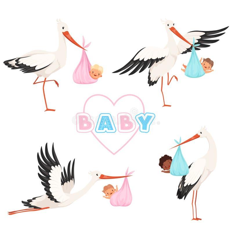 Cigogne avec la chéri Le vol mignon d'oiseau avec de petits enfants de tétine nouveau-née dirigent des poses drôles de mascotte d illustration libre de droits