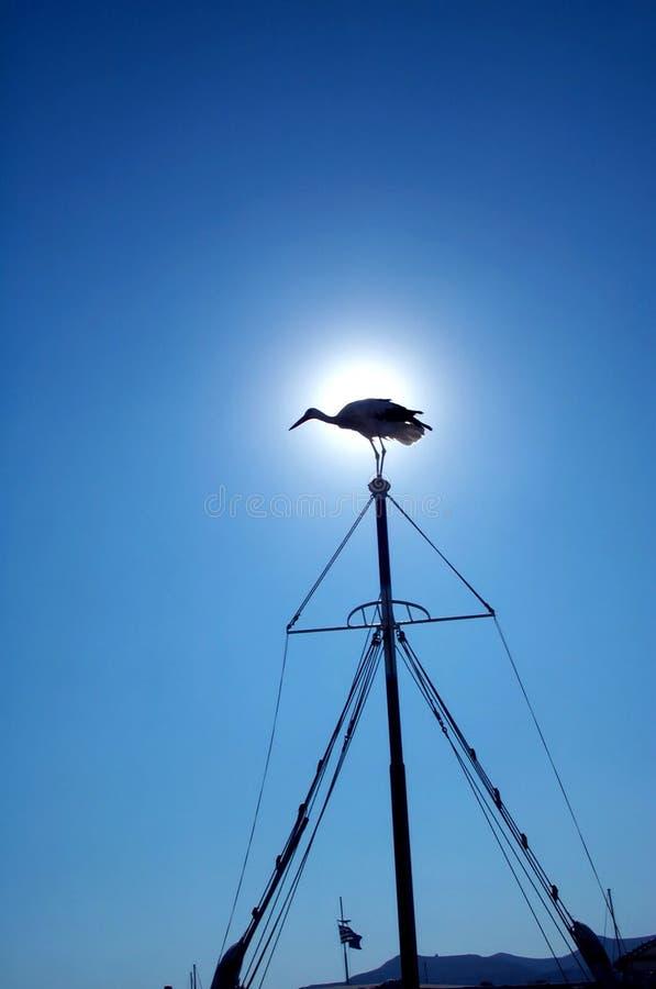 Cigogne sur le mât 1 du bateau