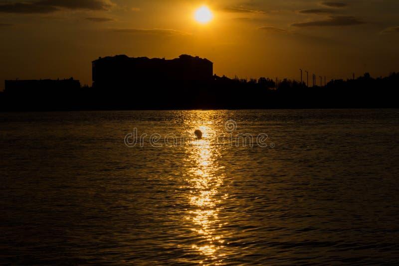 Cigognes dans le lac de Russie image stock