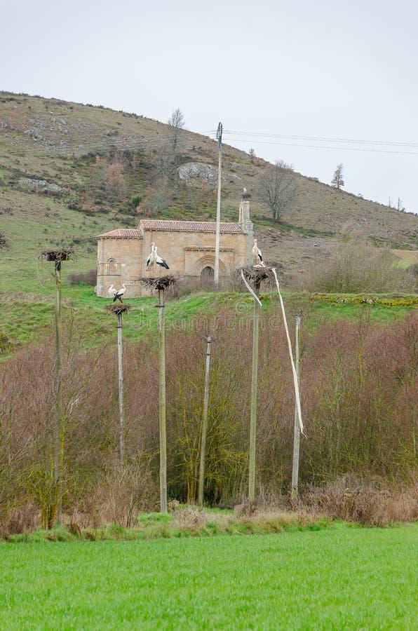 Cigognes en banlieue De Santa Maria Palencia photographie stock