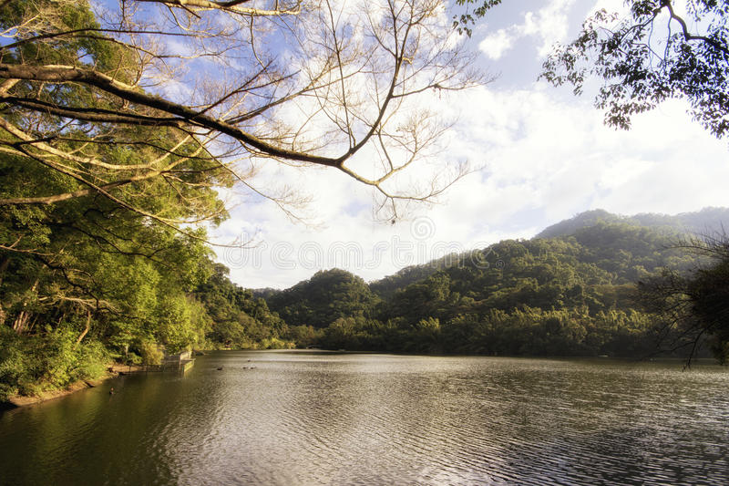 Cihu/lago benevolente fotografia de stock royalty free
