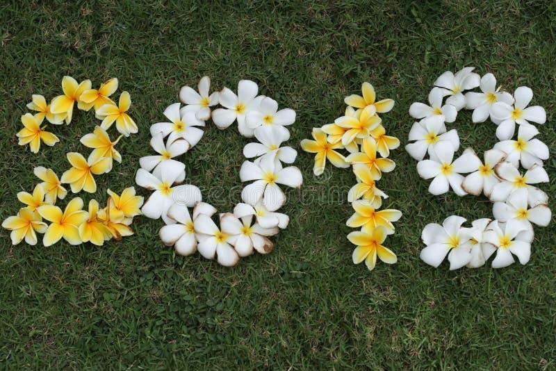 Cijfers van gele en witte bloemen op groen gras royalty-vrije stock afbeeldingen